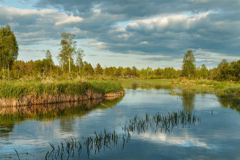 Fishing in Estonia